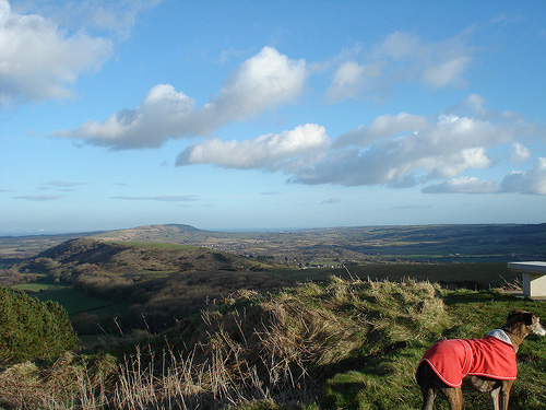 above purbeck